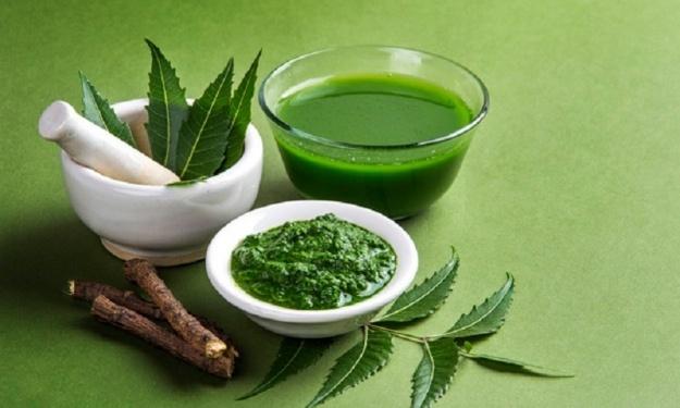 Coronavirus : Non, les feuilles de neem ne contiennent pas de la chloroquine