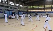 Taekwondo : Démarrage de la saison
